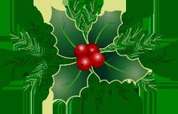 Kerst_degoudenwok2